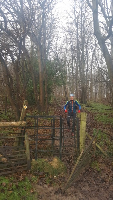 Another kissing gate